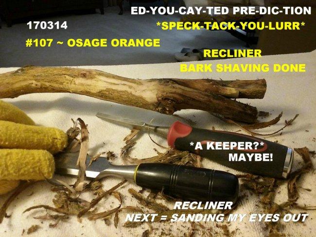 170314 f 107 Osage Orange (2).jpg