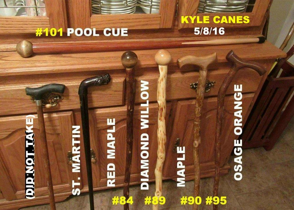 b May 160508 KYLE CANES.JPG