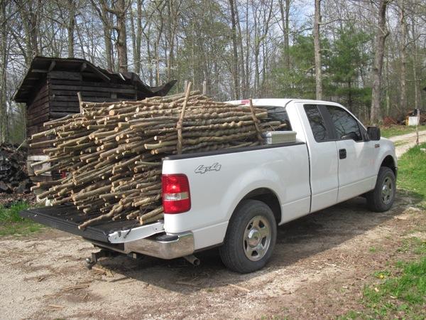 Load of sticks.JPG