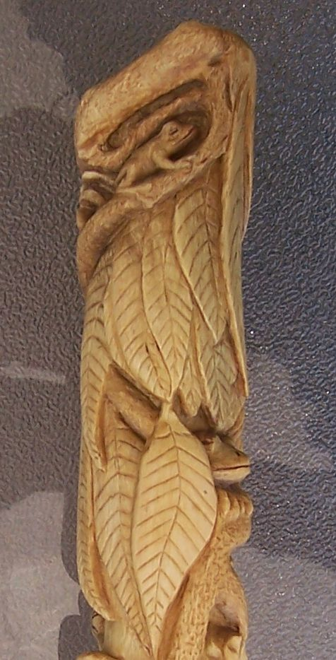 The Rainforest My Best Carved Walking Stick Homemade